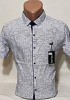 Рубашка мужская с коротким рукавом vk-0068 Paul Smith белая в узор приталенная стрейч коттон Турция S S