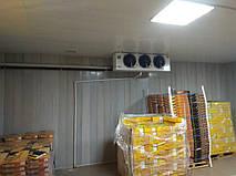 Холодильная камера для хухофруктов 2
