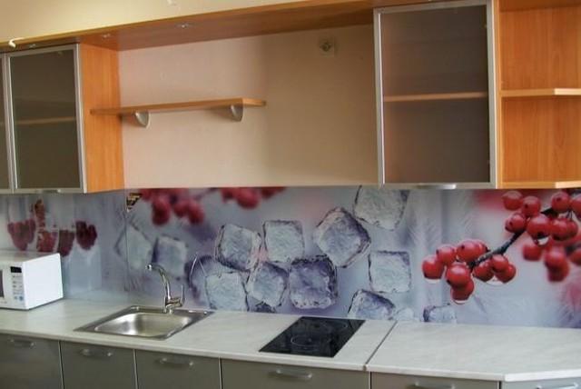 Кухонный фартук из стекла ягоды купить в Днепропетровске
