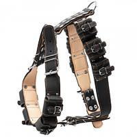 Шлея с утяжелителями №2 для крупных собак, 45 мм, черная
