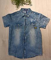 Джинсовая рубашка на мальчика оптом, S&D, 134/140-158/164 см,  № KK-590, фото 1