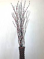 Салекс декоративный. Декор в напольную вазу (150 см)