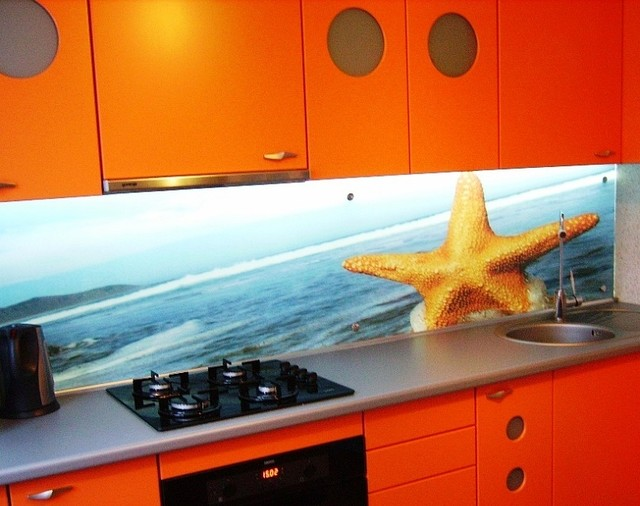 Скинали морская звезда купить в Кременчуге