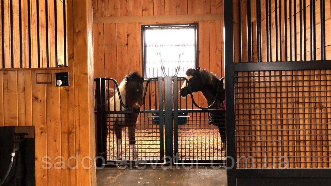 Технологические секции группового содержания лошадей