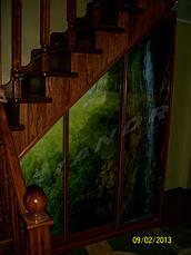 """Шкаф-купе """"Аромат орхидеи"""", фото 2"""