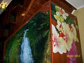 """Шкаф-купе """"Аромат орхидеи"""", фото 3"""