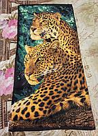 """Полотенце пляжное """"Леопарды"""""""