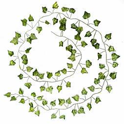 Лиана плющ  зеленый 200см