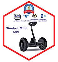 Гироскутер ( гироборд, сигвеи ) Ninebot ( найнбот ) mini черный корпус
