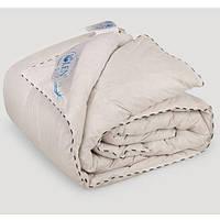 Одеяло пуховое IGLEN 200х220 зимнее кассетное (2002201)
