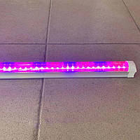 Светодиодный фито светильник для растений Ledmax 600мм (2835-0.6FS)