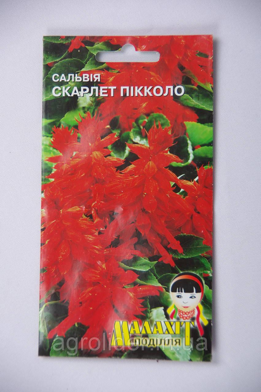 Семена цветов Сальвия Скарлет Пикколо 0.5 (Малахiт Подiлля)