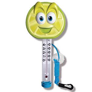 Термометри для басейнів