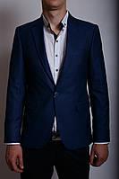 Пиджак мужской Daniel S 334192 синий в стиле бренда