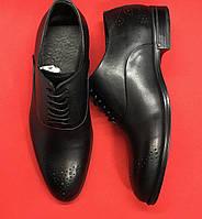 Мужские туфли из натуральной кожи 40 размер SKL55-249386