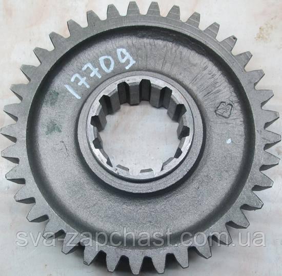 Шестерня КПП МТЗ Д-240 2-ї ступені редуктора ХУМ Z=37 ведена 50-1701314