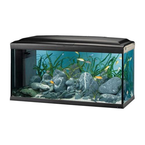 Скляний акваріум Ferplast Cayman 110 Professional Black T5 з лампами, внутрішнім фільтром і таймером, 230 л
