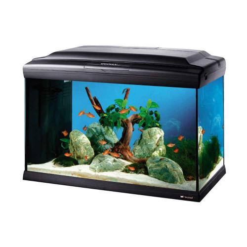 Аквариум Ferplast Cayman 60 Professional Black с лампой, внутренним фильтром и таймером, черный, 60 л