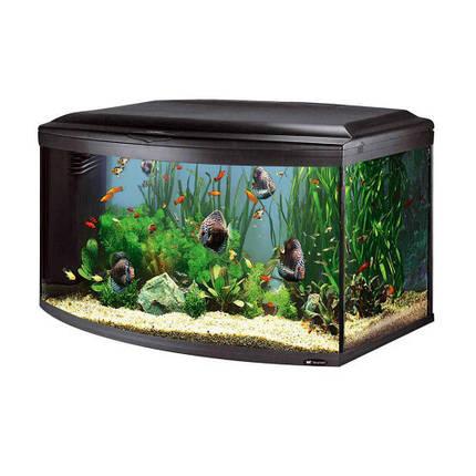 Аквариум с закругленным стеклом Ferplast Cayman 110 Scenic Black T5 с, внутренним фильтром и таймером, 300 л, фото 2