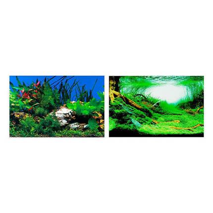 Двосторонній акваріумний фон Ferplast BLU 9040 Background із зображенням рослині, 60x40 см, фото 2