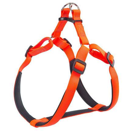 Нейлоновая шлейка Ferplast Daytona P Harness Extra Large Orange для собак, A: 82÷89 см, B: 88÷99 см, фото 2