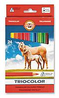Олівці 24 кольори Jumbo Triocolor, K-I-N