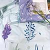 Комплект постельного белья ранфорс 20112