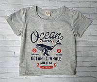 """Футболка детская для мальчика """"Ocean"""" размер 3-6 лет, серого цвета"""
