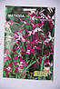 Семена цветов Матиолла профпакет (5 грамм), фото 2