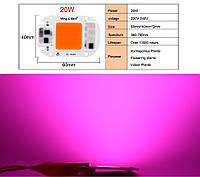 Світлодіодна LED фіто матриця COB 20 Вт 220v Для росту рослин, повний спектр світла