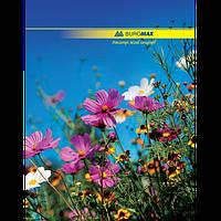 Канцелярская книга А4 для учета Buromax (BM.2400)