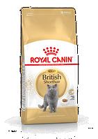 Сухой корм Royal Canin British Shorthair Adult 4 кг для взрослых кошек породы британская короткошерстная