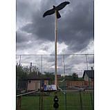 """Визуальный отпугиватель птиц """"Хищник-3"""" (Пустельга), фото 10"""