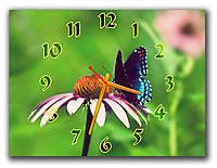 Красивые часы картина на кухню настенные Мотылек на ромашке на зеленом, 30х40 см