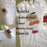 Dress Fineffect NL эко средство для выведения разных пятен на всех видах тканей Дресс спрей для чистки 250мл, фото 8