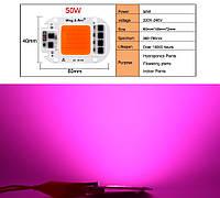 Світлодіодна LED фіто матриця COB 50 Вт 220v Для росту рослин, повний спектр світла