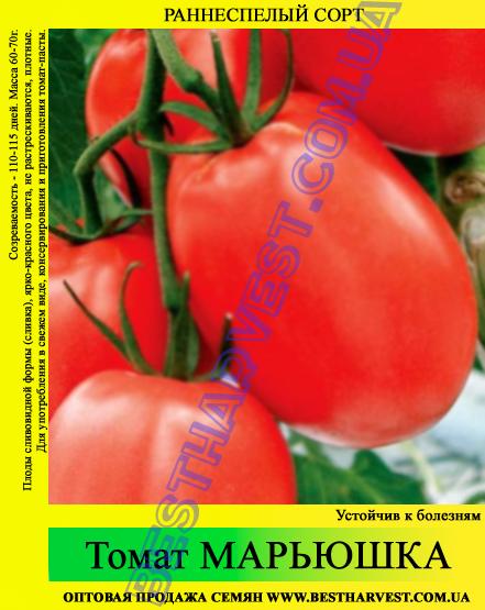 Семена томата Марьюшка 0,5 кг