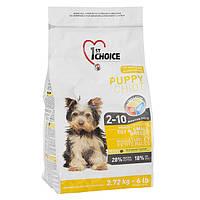 Сухой корм для щенков мини и малых пород 1st Choice Puppy Toy&Small Chicken КУРИЦА, 2.72 кг