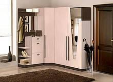 Меблі для прихожих і гостінних