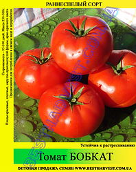 Насіння томату «Бобкат» 100 г
