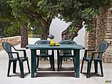 Вуличний стілець AMF Ischia зелений пластик для саду на терасу в кафе, фото 8
