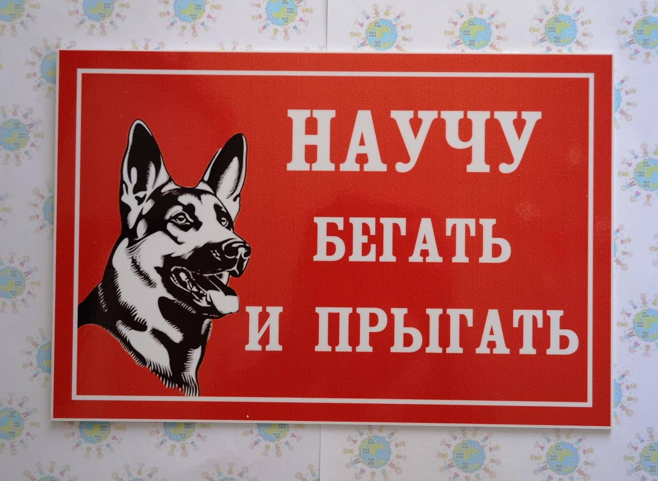 Прикольные надписи осторожно злая собака в картинках