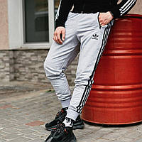 Штаны спортивные мужские Adidas серые, зауженные спортивные брюки Адидас