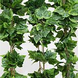 Искусственные лианы и ампельные растения.