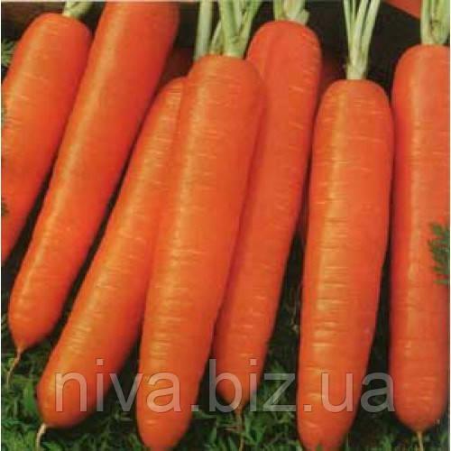 Ступицкая семена моркови Нантес Moravoseed 1 000 г