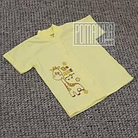 Детская кофточка футболка р 80-86 7-12 мес с кнопками короткий рукав для малышей летняя КУЛИР 3174 Желтый