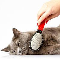 Средства по уходу и гигиене для кошек