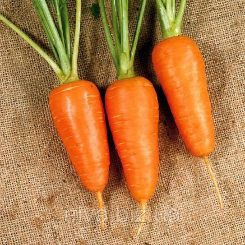 Шантане семена моркови Semenaoptom 1 000 г