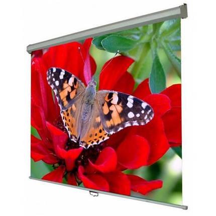 """Экран для проектора WALFIX SNM-4 (120"""", 240х180 см, 4:3), фото 2"""