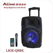 "NEW ! Блютуз колонка акумуляторна 12"" Ailiang LiGE-AJ12DKS з мікрофоном"